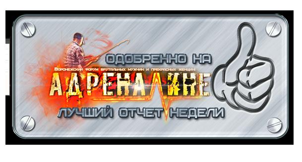 http://s7.uploads.ru/JtaSn.png