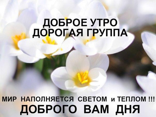 http://s7.uploads.ru/KHAOW.jpg