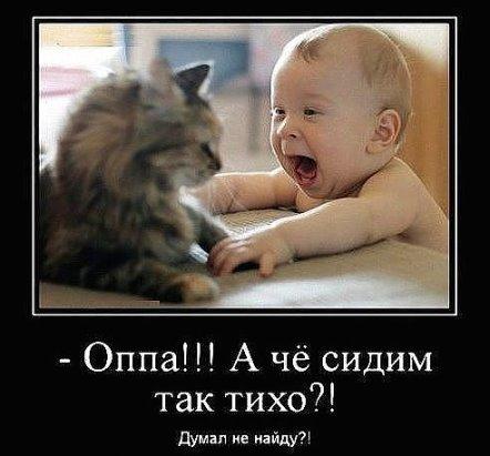 http://s7.uploads.ru/KOa2z.jpg