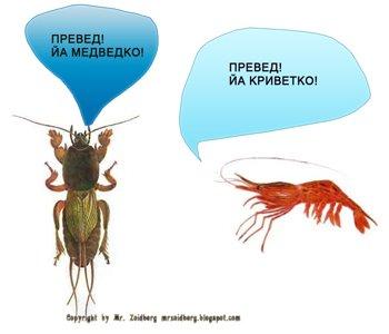 http://s7.uploads.ru/KTuyI.jpg