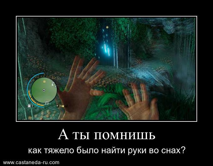 http://s7.uploads.ru/Kiylo.jpg