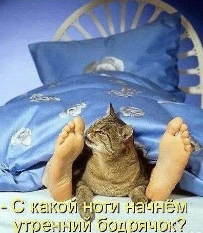 http://s7.uploads.ru/KxO48.jpg