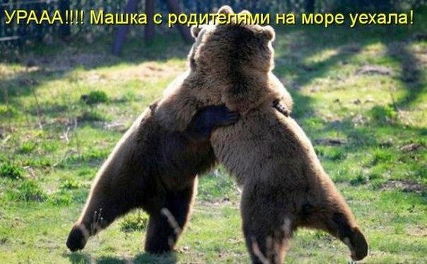 http://s7.uploads.ru/L5p19.jpg