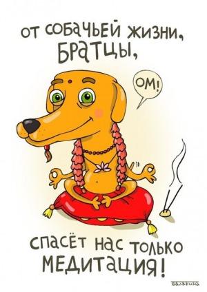 http://s7.uploads.ru/Lk5Jz.jpg