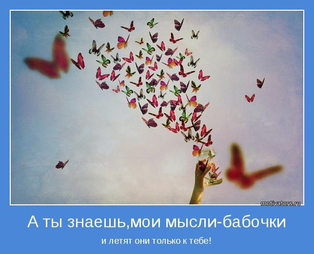 http://s7.uploads.ru/Lmgd6.jpg