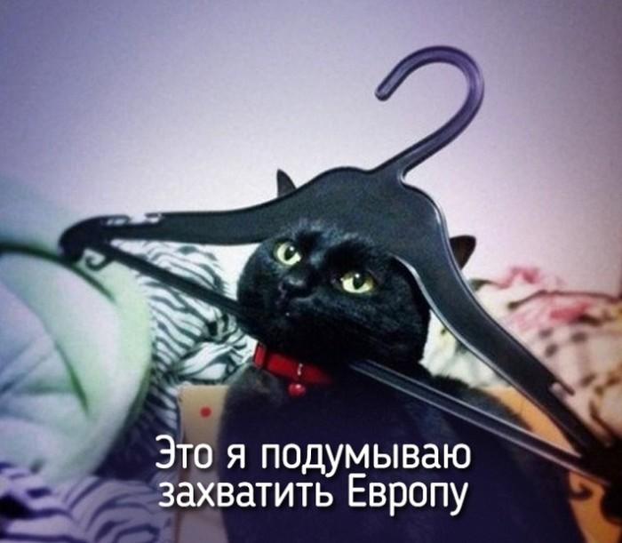 http://s7.uploads.ru/M8it4.jpg