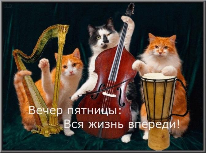 http://s7.uploads.ru/PISXv.jpg