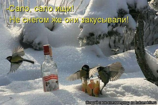 http://s7.uploads.ru/PK2VX.jpg