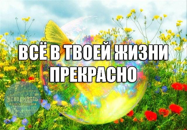 http://s7.uploads.ru/PUp5J.jpg