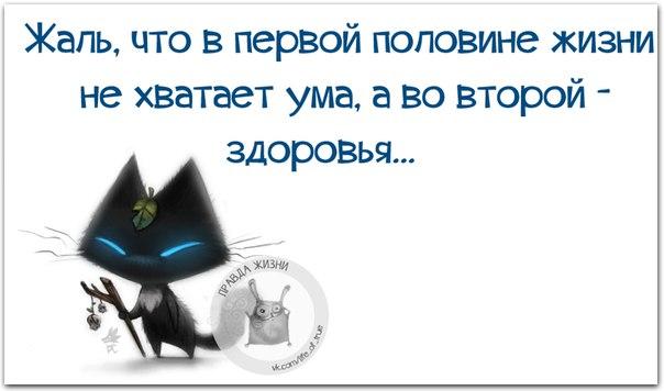 http://s7.uploads.ru/Q1wAn.jpg