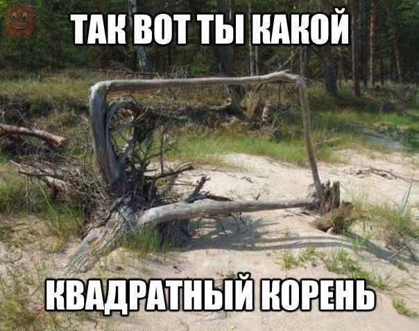 http://s7.uploads.ru/Q3O9a.jpg