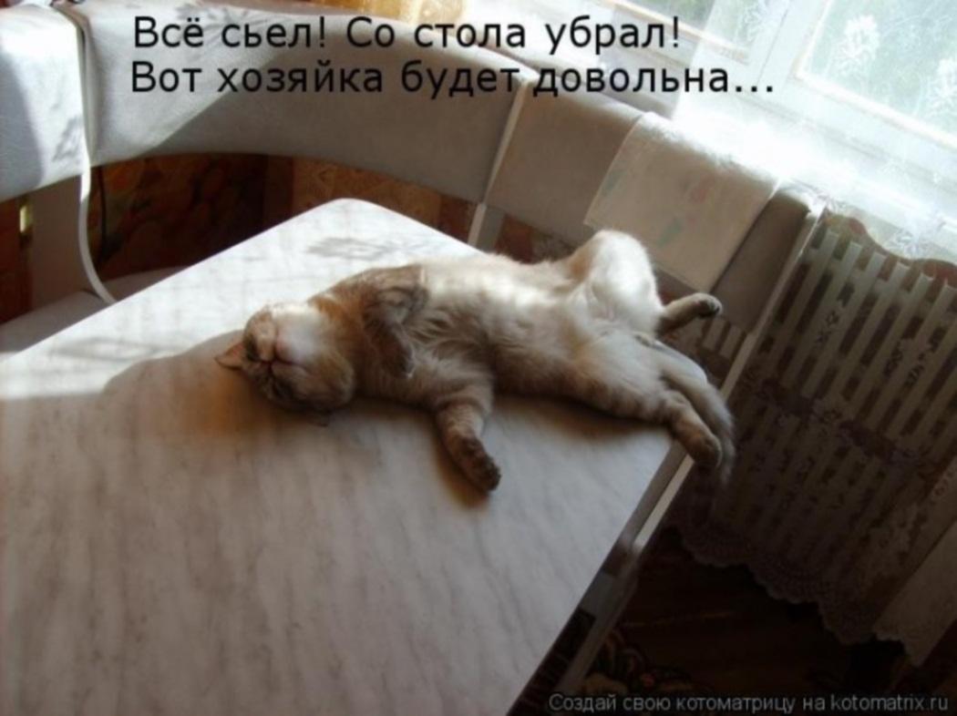 http://s7.uploads.ru/QGjaD.jpg