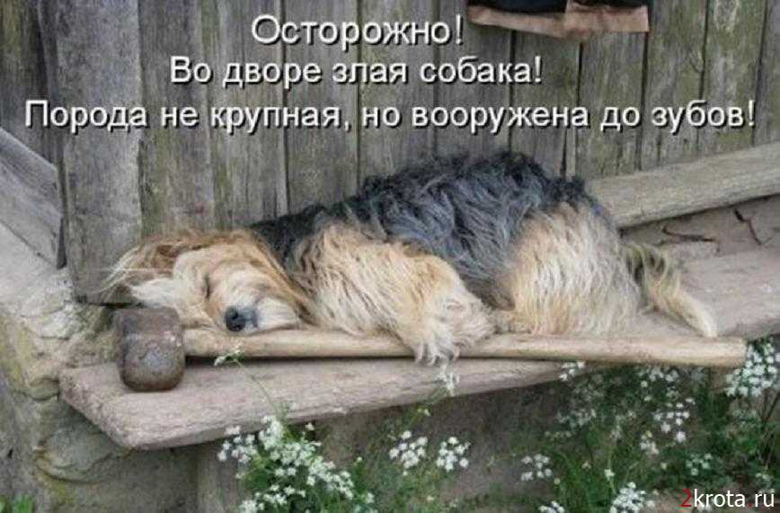 http://s7.uploads.ru/QeFyn.jpg