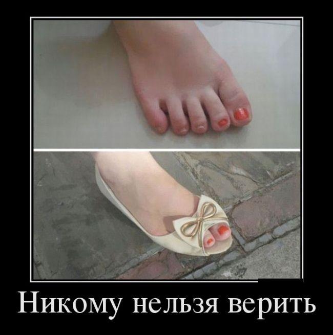 http://s7.uploads.ru/QiFs0.jpg