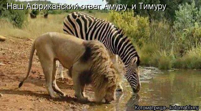 http://s7.uploads.ru/R5eaE.jpg