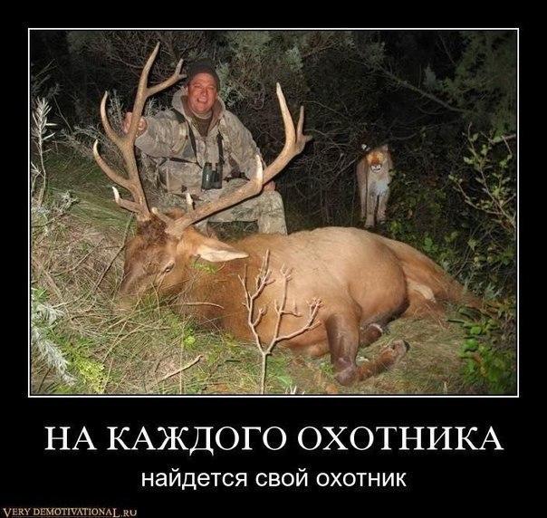 http://s7.uploads.ru/RvbyQ.jpg
