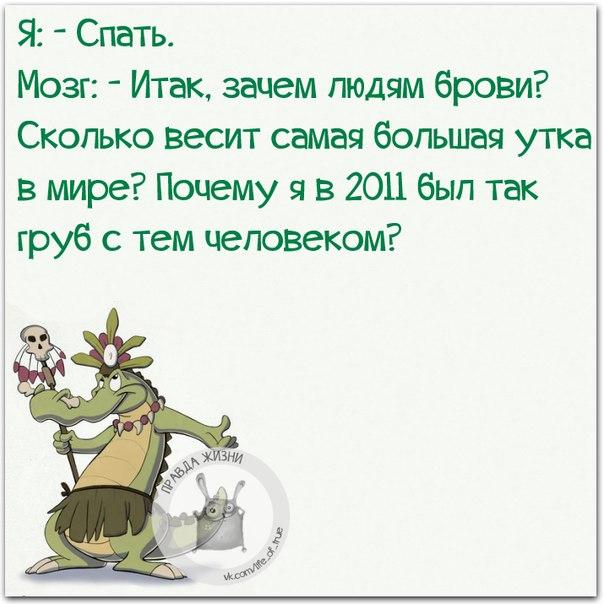 http://s7.uploads.ru/SKvyb.jpg