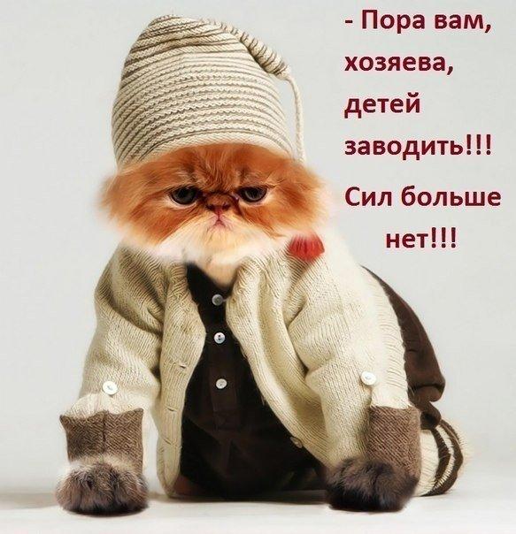 http://s7.uploads.ru/SlEBG.jpg