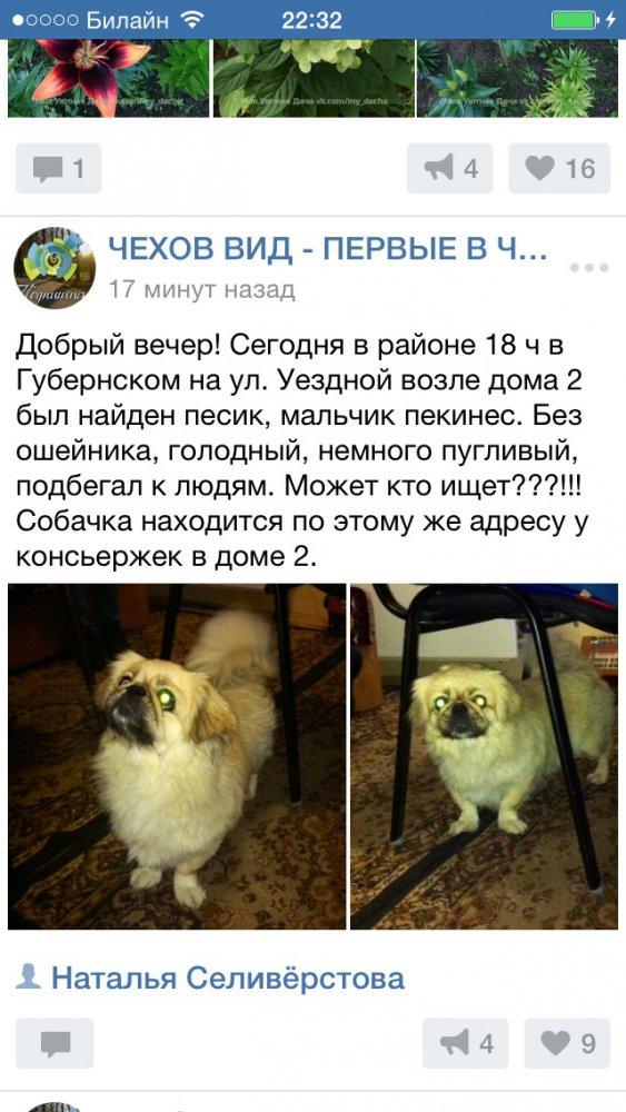 http://s7.uploads.ru/T7pBx.jpg