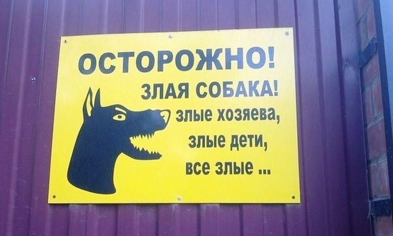 http://s7.uploads.ru/TC3Jk.jpg