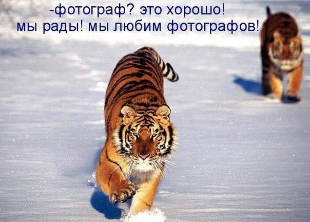 http://s7.uploads.ru/TGi3u.jpg