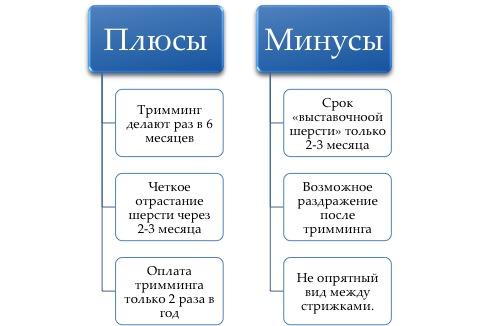 http://s7.uploads.ru/TVbI0.jpg