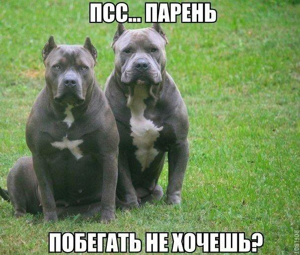 http://s7.uploads.ru/TWMzF.jpg