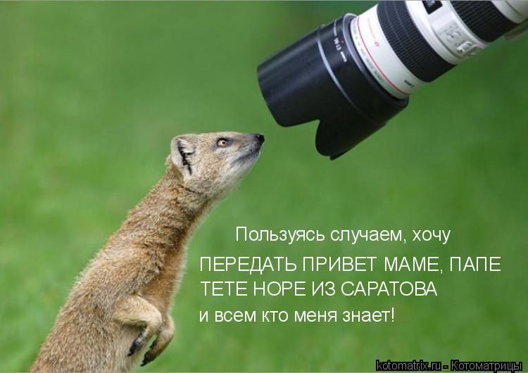 http://s7.uploads.ru/Txg5i.jpg