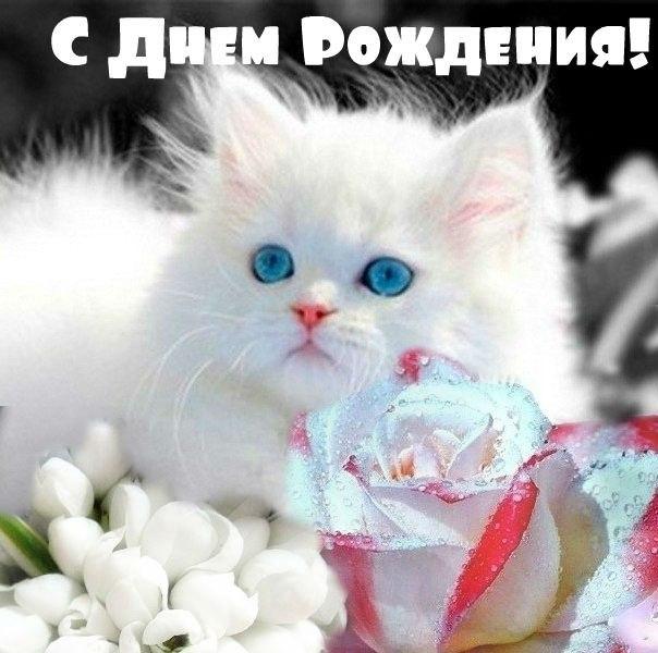 http://s7.uploads.ru/VMzun.jpg