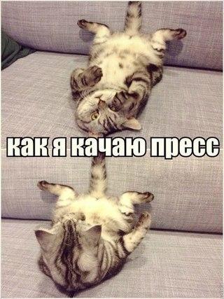 http://s7.uploads.ru/VN4Ho.jpg