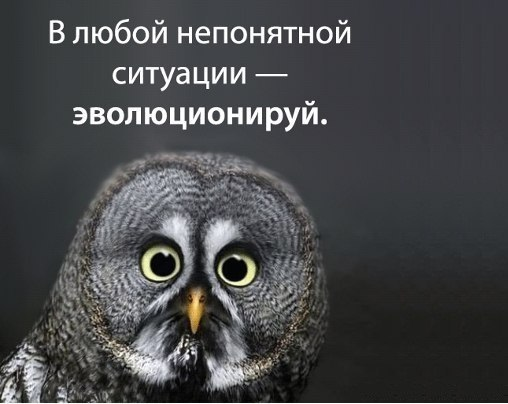 http://s7.uploads.ru/VR0nN.jpg