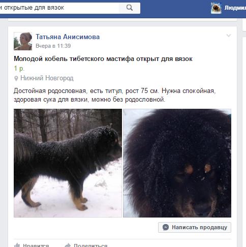 http://s7.uploads.ru/VcLGi.png