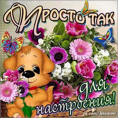 http://s7.uploads.ru/W4zIp.jpg