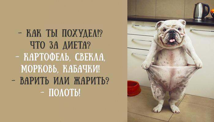 http://s7.uploads.ru/X5PDj.jpg
