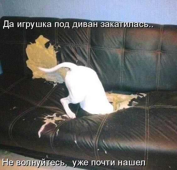 http://s7.uploads.ru/X9Soy.jpg