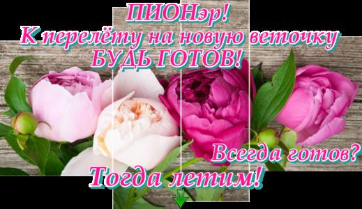 http://s7.uploads.ru/XKSMO.png