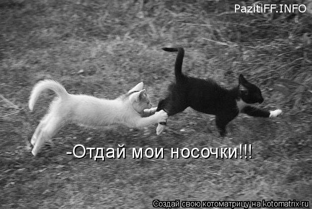 http://s7.uploads.ru/XuT3K.jpg