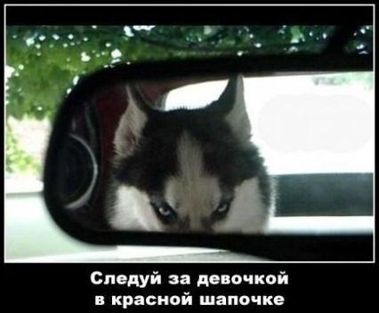 http://s7.uploads.ru/Z72Cy.jpg