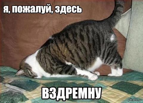 http://s7.uploads.ru/ZEO1X.jpg