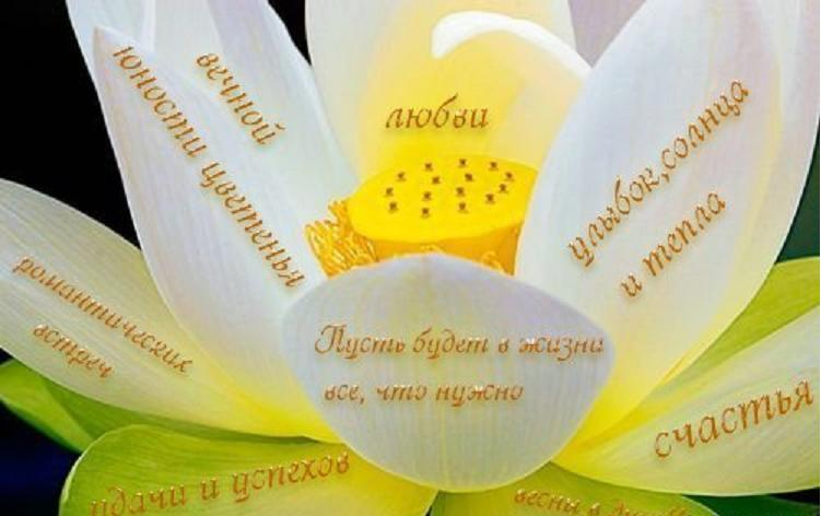 http://s7.uploads.ru/aJBO4.jpg
