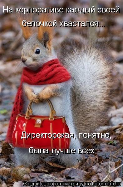 http://s7.uploads.ru/aj5nd.jpg