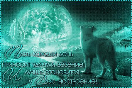 http://s7.uploads.ru/aq8fD.png
