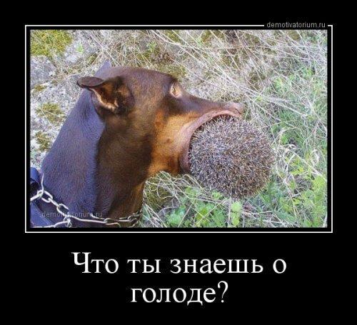 http://s7.uploads.ru/b8LPJ.jpg