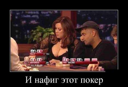 http://s7.uploads.ru/bQB3Z.jpg
