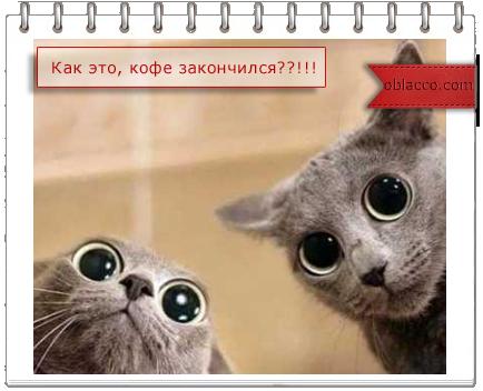 http://s7.uploads.ru/blNth.png