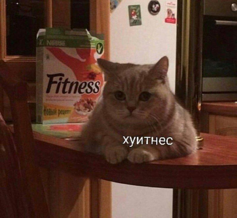 http://s7.uploads.ru/cXCIg.jpg