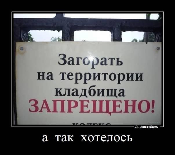 http://s7.uploads.ru/cf2yi.jpg