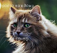 http://s7.uploads.ru/crNgP.jpg