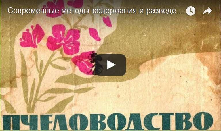 http://s7.uploads.ru/d/DdXYw.jpg