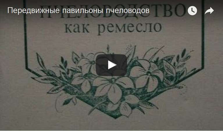 http://s7.uploads.ru/d/XZI1M.jpg